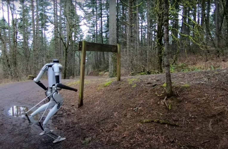 Video Friday: Digit Takes a Hike