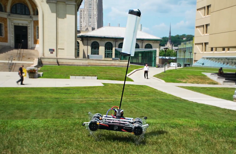 The Cheetah's Fluffy Tail Points The Way for Robots With High-Speed Agility