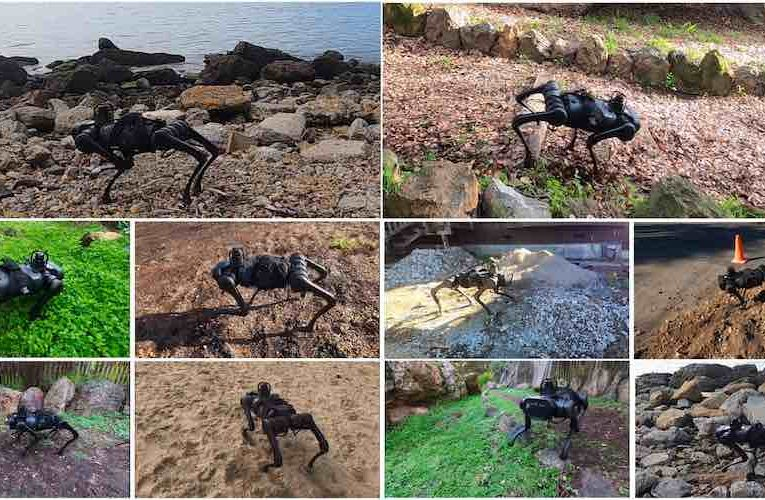 Quadruped learns to adapt to changing terrain in real time