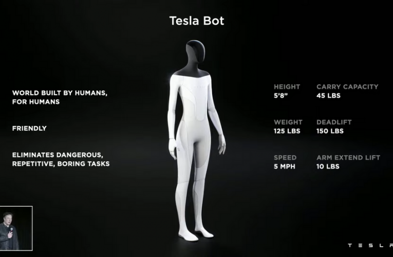 Elon Musk Has No Idea What He's Doing With Tesla Bot