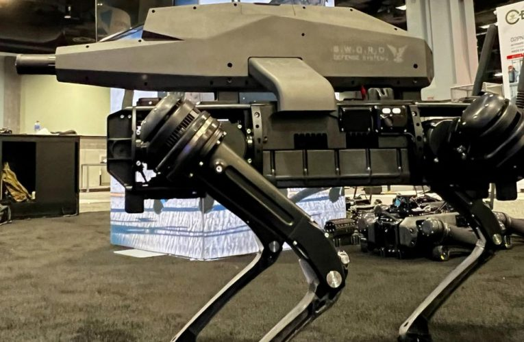Q&A: Ghost Robotics CEO on Armed Robots for the U.S. Military